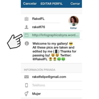Incluir link en Bio de Instagram para lograr tráfico web, by Rakel Felipe