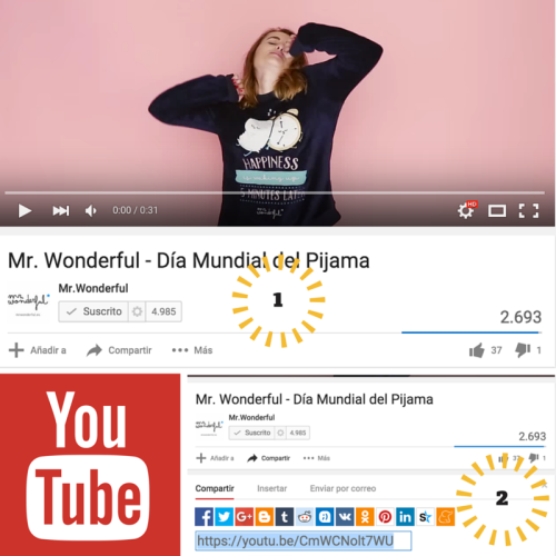 Copiar link de vídeo en YouTube by Rakel Felipe