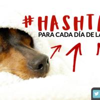 #Hashtags para cada día de la semana